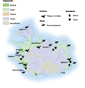 Land vector illustrator. Looking for iceland map