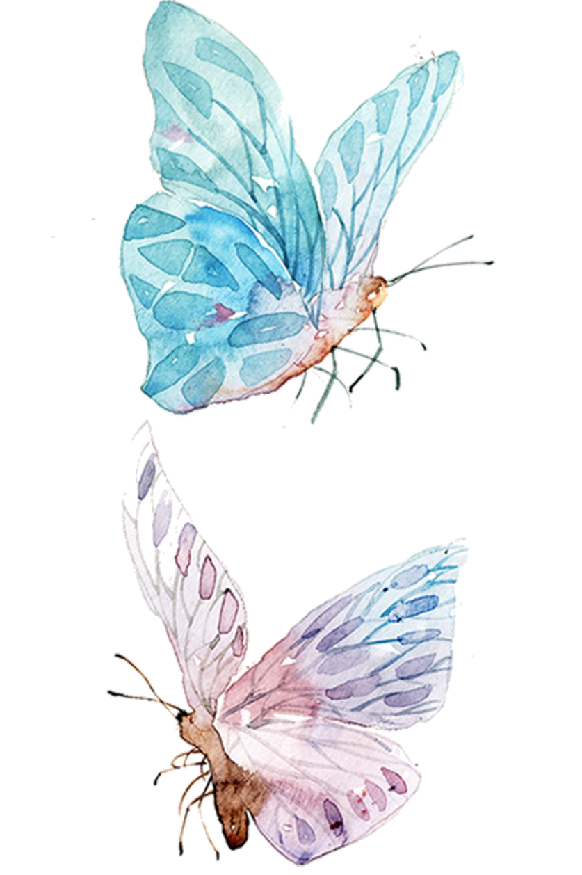 Ai vector watercolor butterfly. Painting drawing clip art