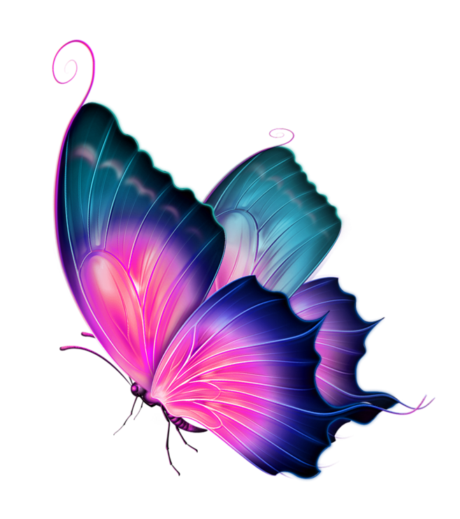 Ai vector watercolor butterfly. Clip art transprent png