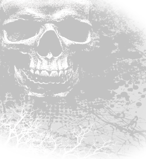 Airbrush drawing skull. Motorcycles set your machine