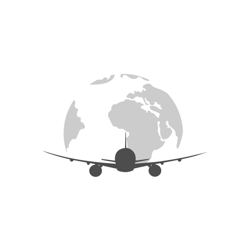 Traveler vector plane. Airplane logo travel transportation