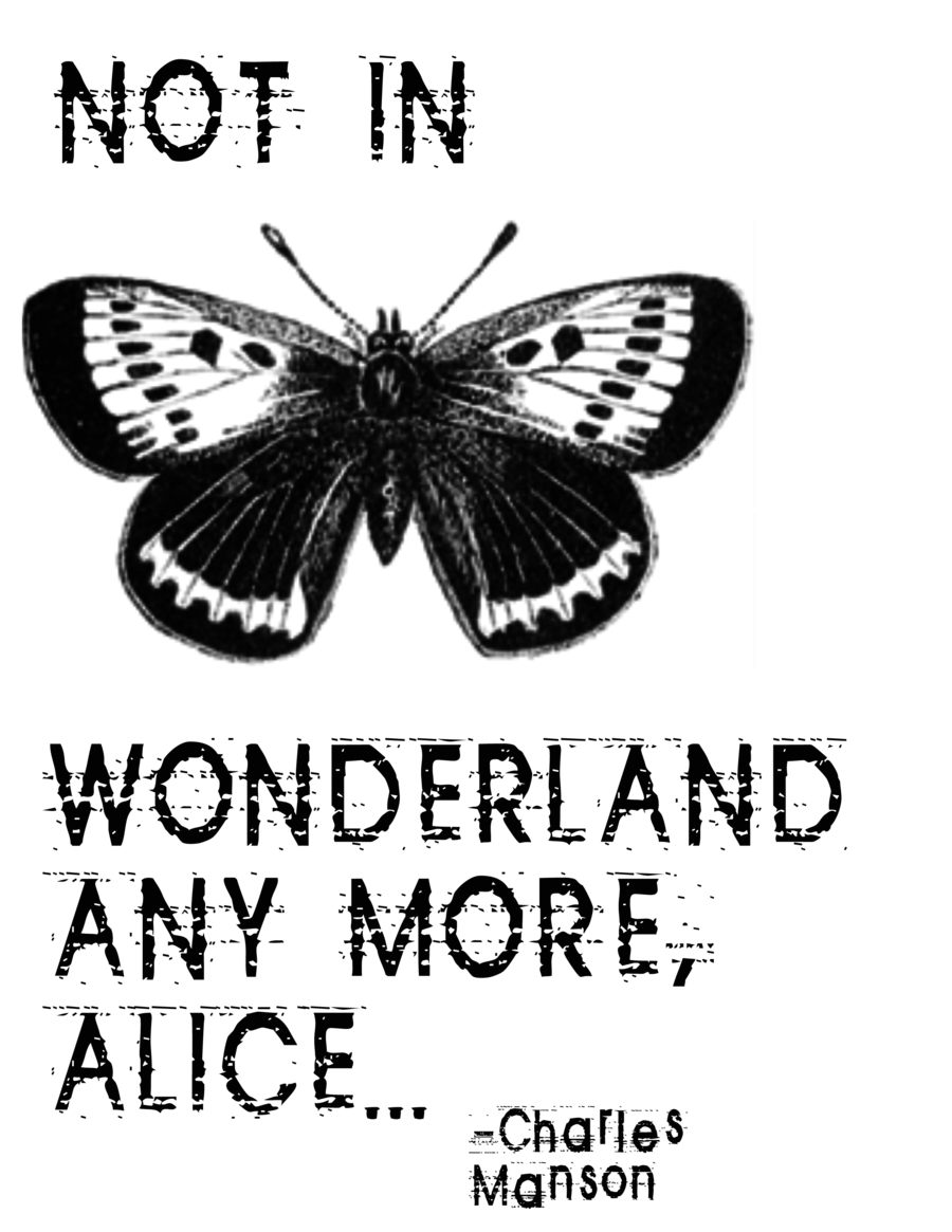 Alice in wonderland quote png. We re not anymore