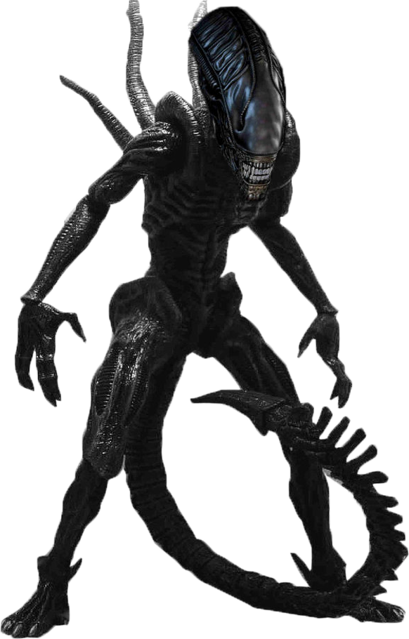 xenomorph transparent cat