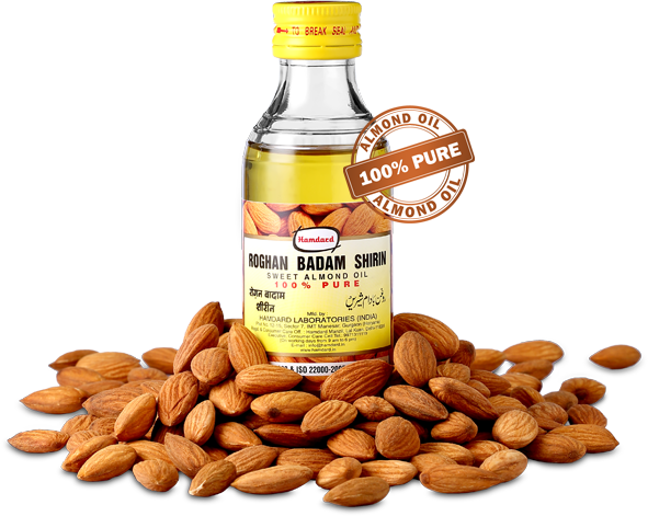 Nuts vector castor seed. Which oil has more
