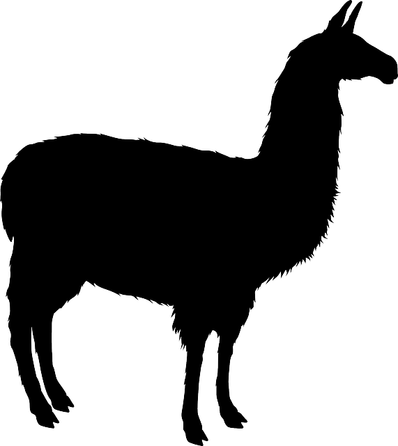 Alpaca clipart silhouette. Free image on pixabay