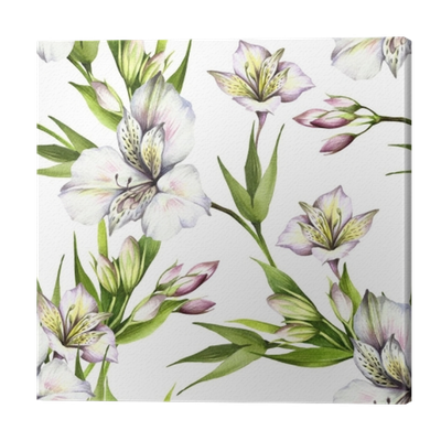 Alstroemeria drawing flower. Seamless pattern with hand