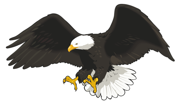 Clip art image color. American bald eagle png svg free library
