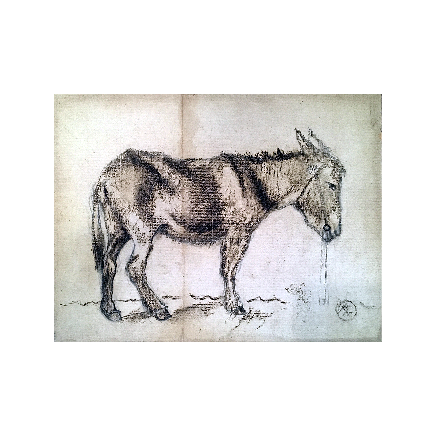 American drawing 20th century. Or south the burro