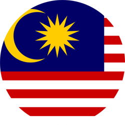American vector shape. Malaysia flag country flags