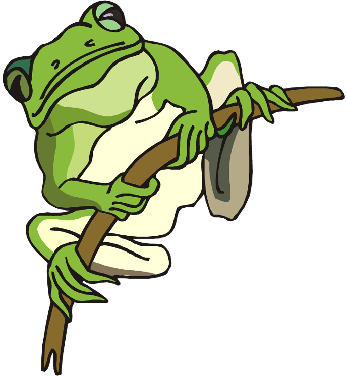 Amphibian drawing glass frog. Clipart graphics illustrations free