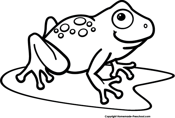 Amphibian drawing wood frog. Clipart image on a
