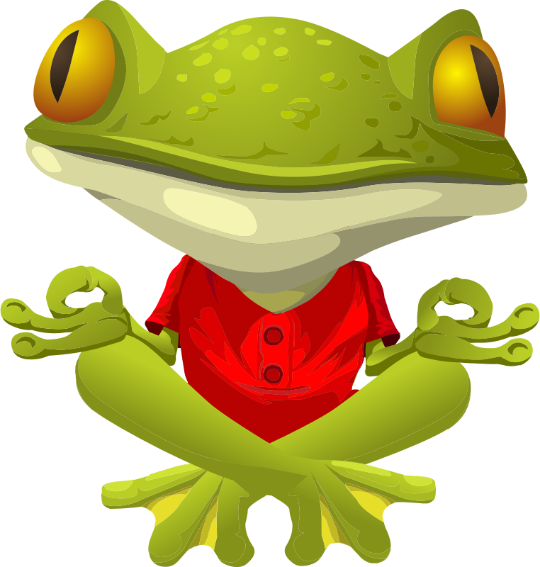 Coqui drawing glass frog. Cute graphics free practicing