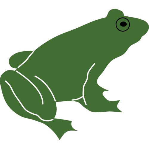 Amphibian drawing katak. Frog at getdrawings com
