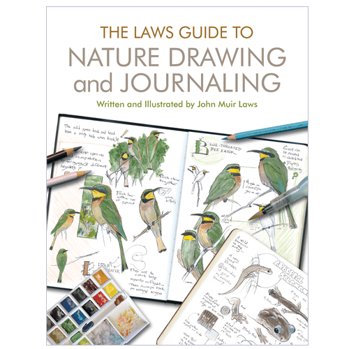 Nature and journaling john. Law drawing simple image free download