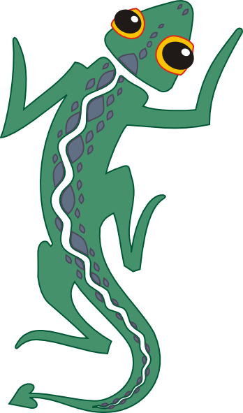 Transparent gecko spotted. Collection of free amphibia