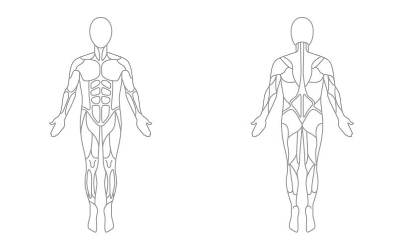 Judo workout plan exercise. Anatomical muscle psrinting png clipart library