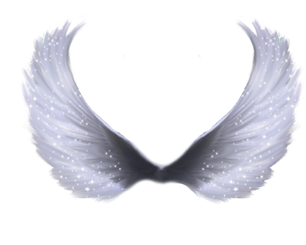 Baby angel wings png. Transparent pictures free icons