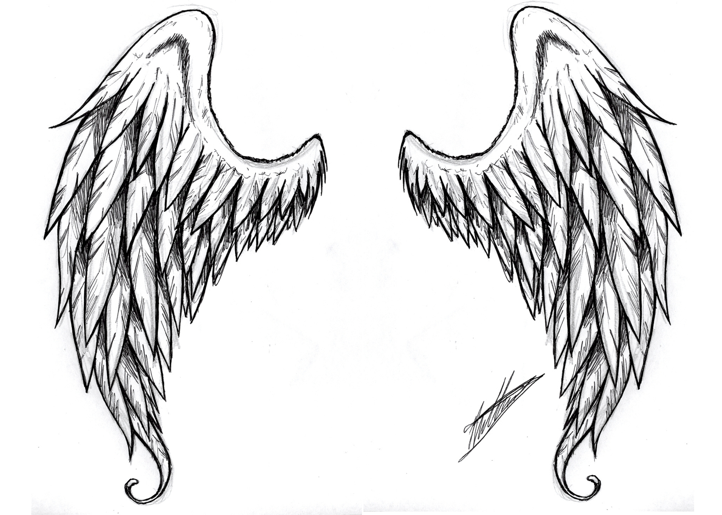 Angel clipart realistic. Wings drawing gallery for