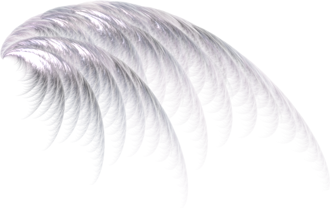 Angel feather png. Wing wings white girly