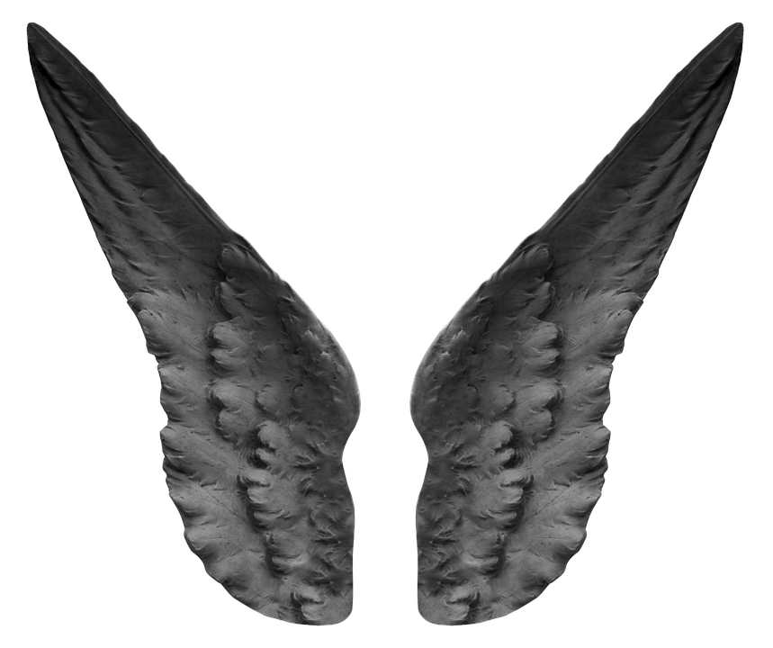 Angel feather png. Free photo wing fairytale