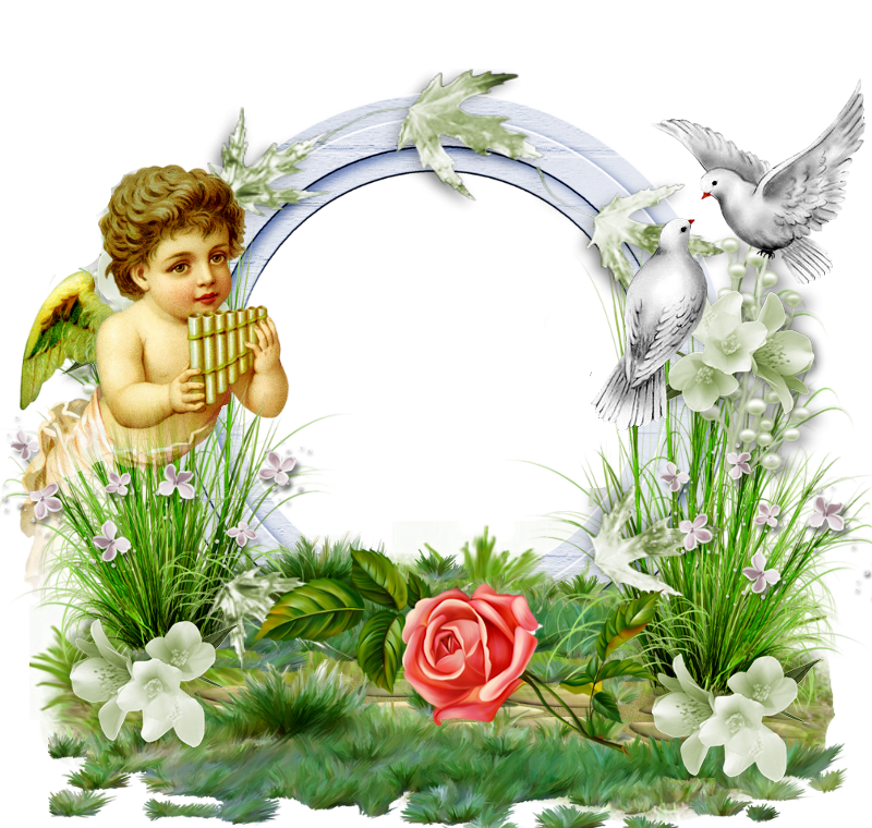 Angel frame png. Transparent photo with and