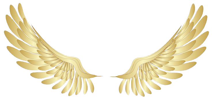 Angel wings .png. Image halo png file