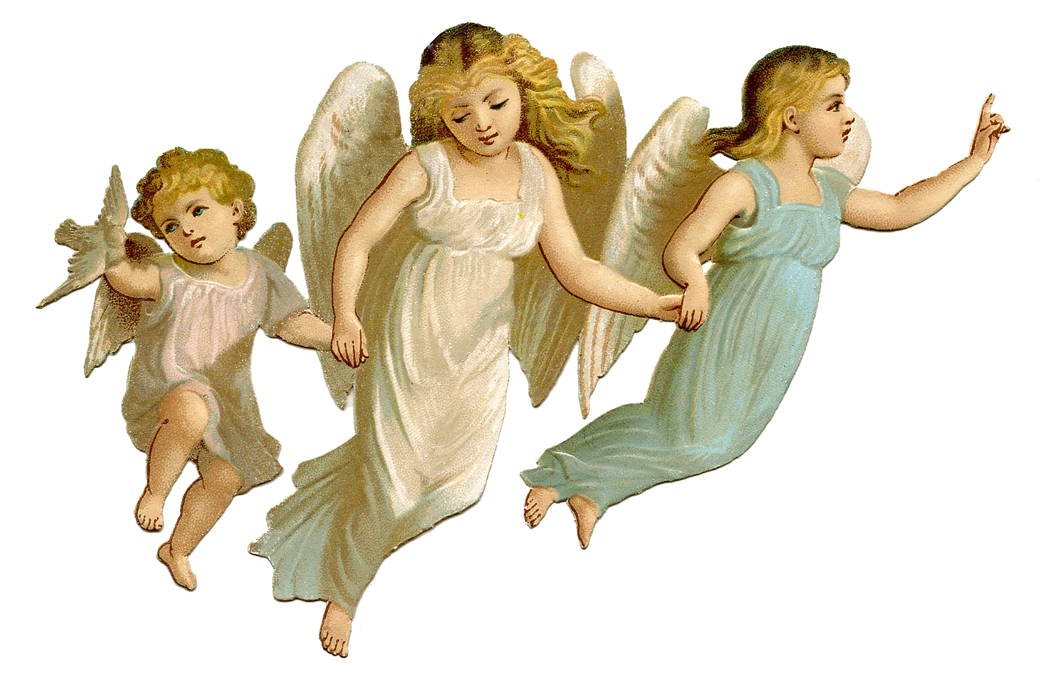 Holiday angels png. Angel picture mart
