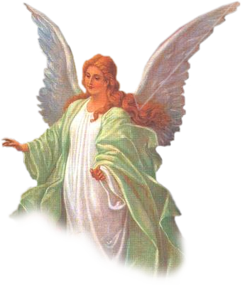 Angel png. Transparent pictures free icons