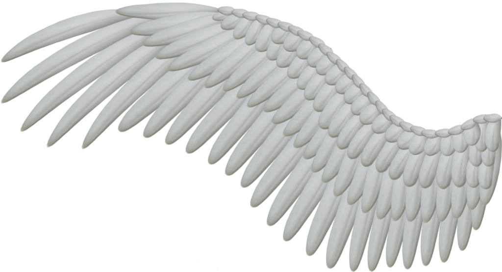 Anime wing png. Wings images free download