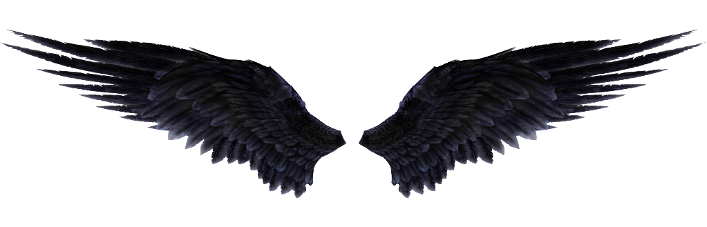 Devil wing png. Wings images free download