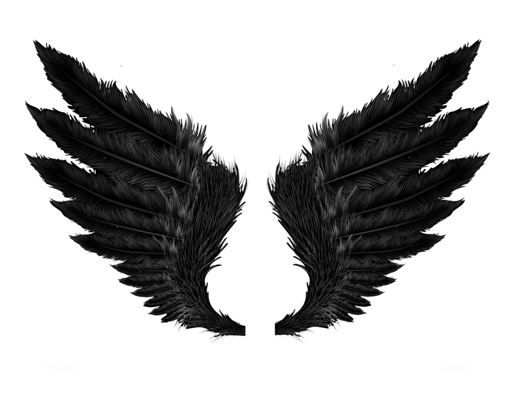 Png wings. Hd transparent images pluspng