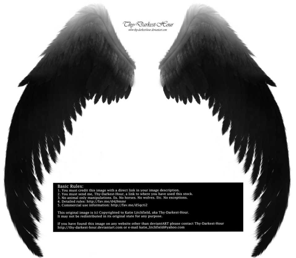 Angel wings for cats png. Arch silver black by