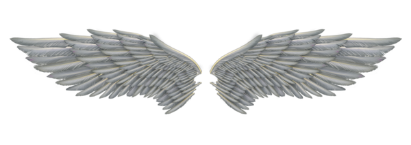 Angel wings .png. White png image arts