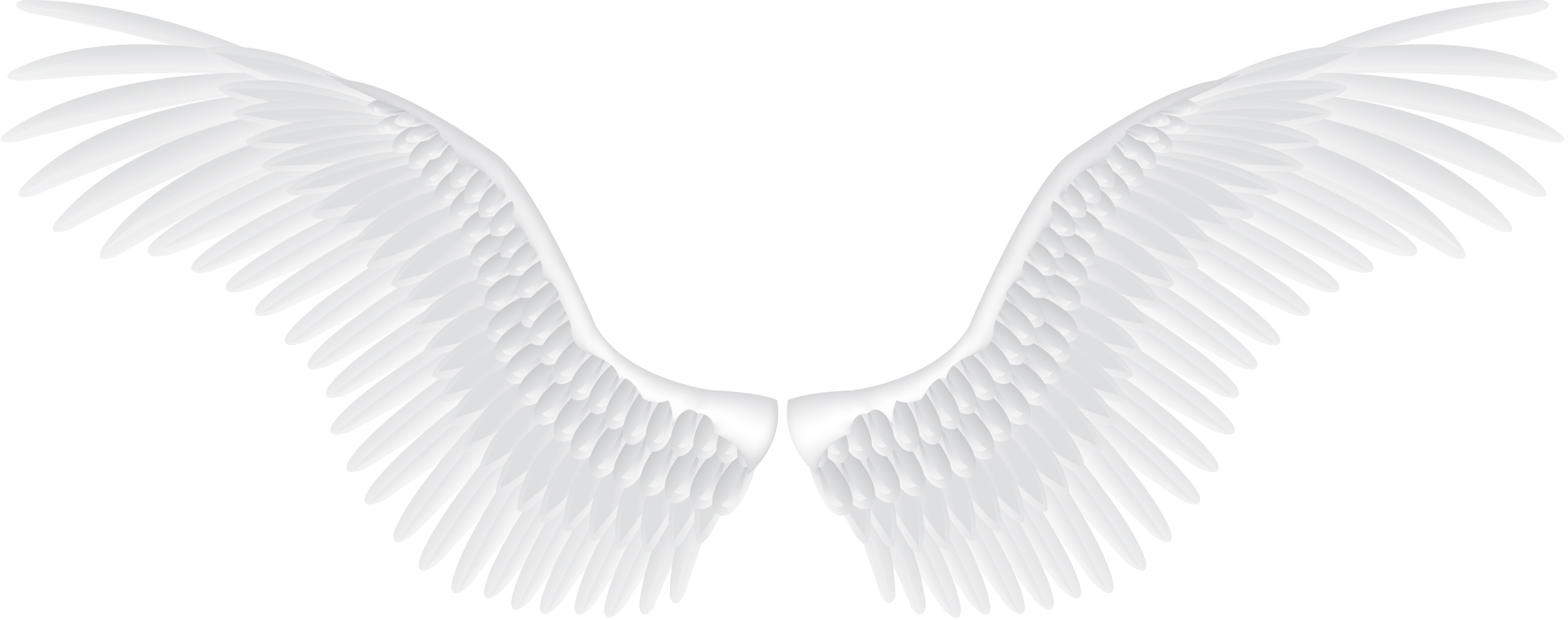 Dark angels wallpaper png. Wings images free download