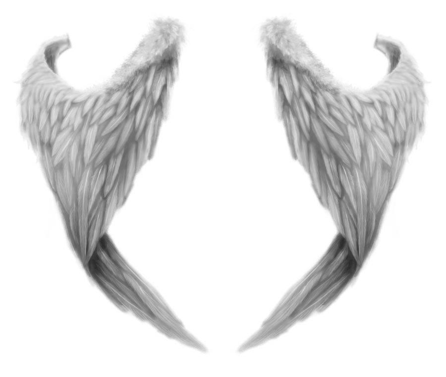 Angel wings png. Fantasy transparent stickpng