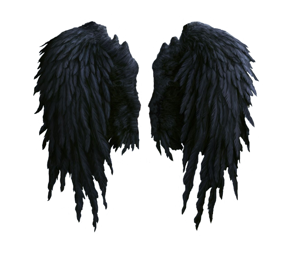Black png. Wings feathered angel and