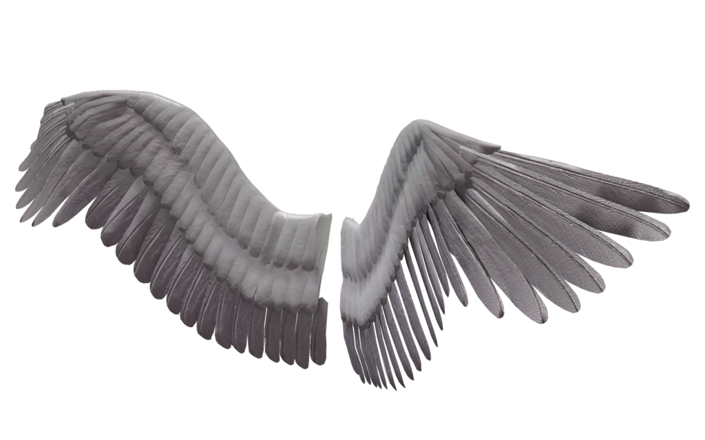 Angel wings png clipart. Image background vector psd