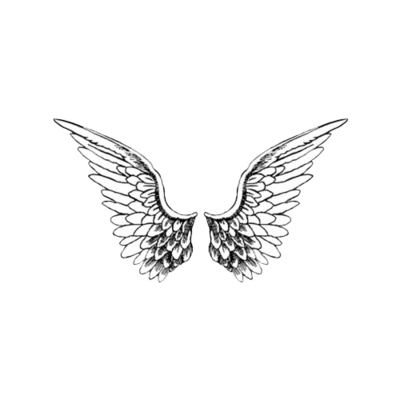Angel wings png tumblr. Image about in random