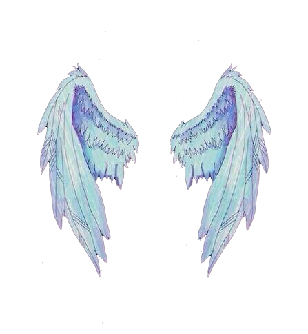 Asas anjo . Angel wings png tumblr black and white