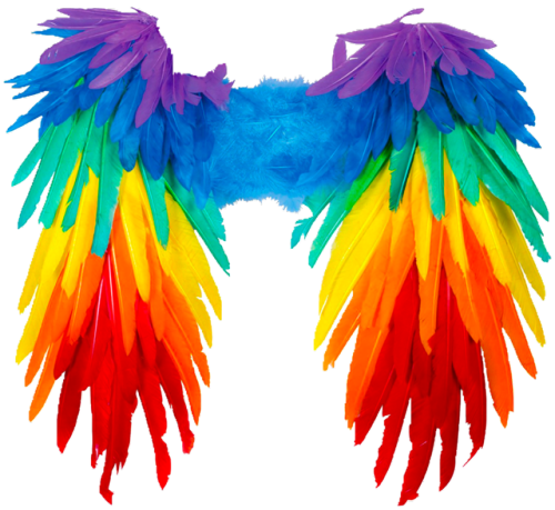 Transparent nghtcrawlers follow unfollow. Angel wings png tumblr clip library library