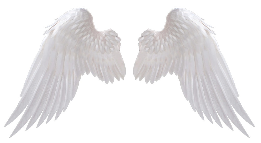 Angel wings .png. By hz designs on