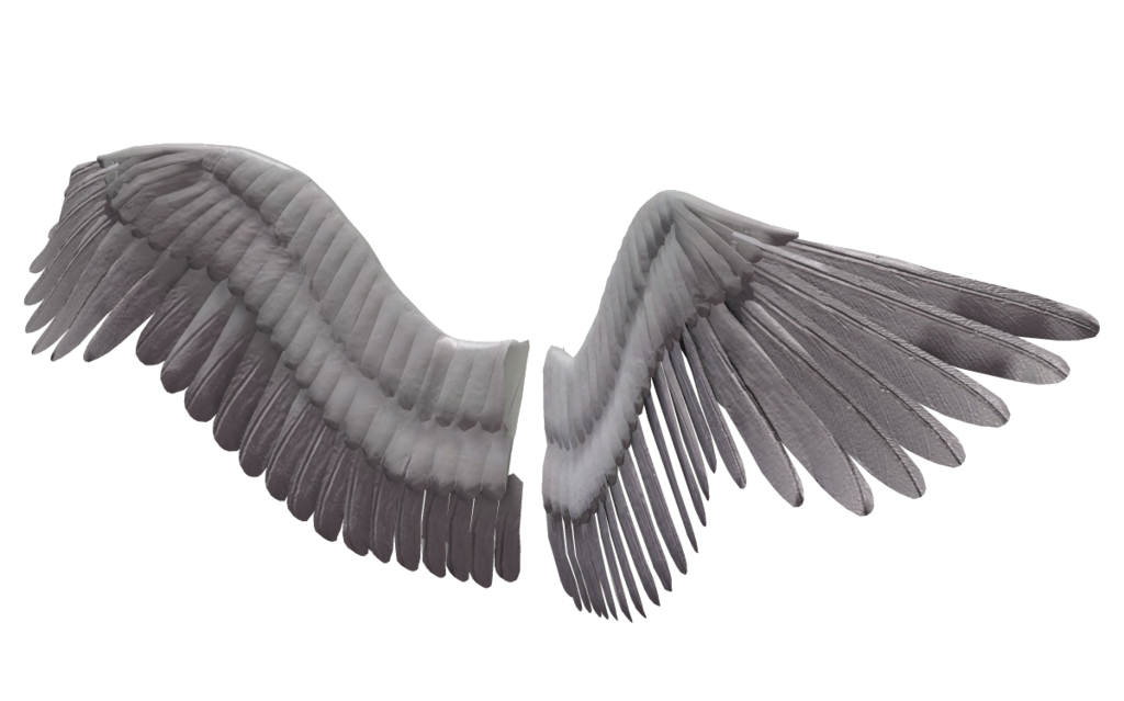 Images free download. Angel wings png tumblr clipart transparent library