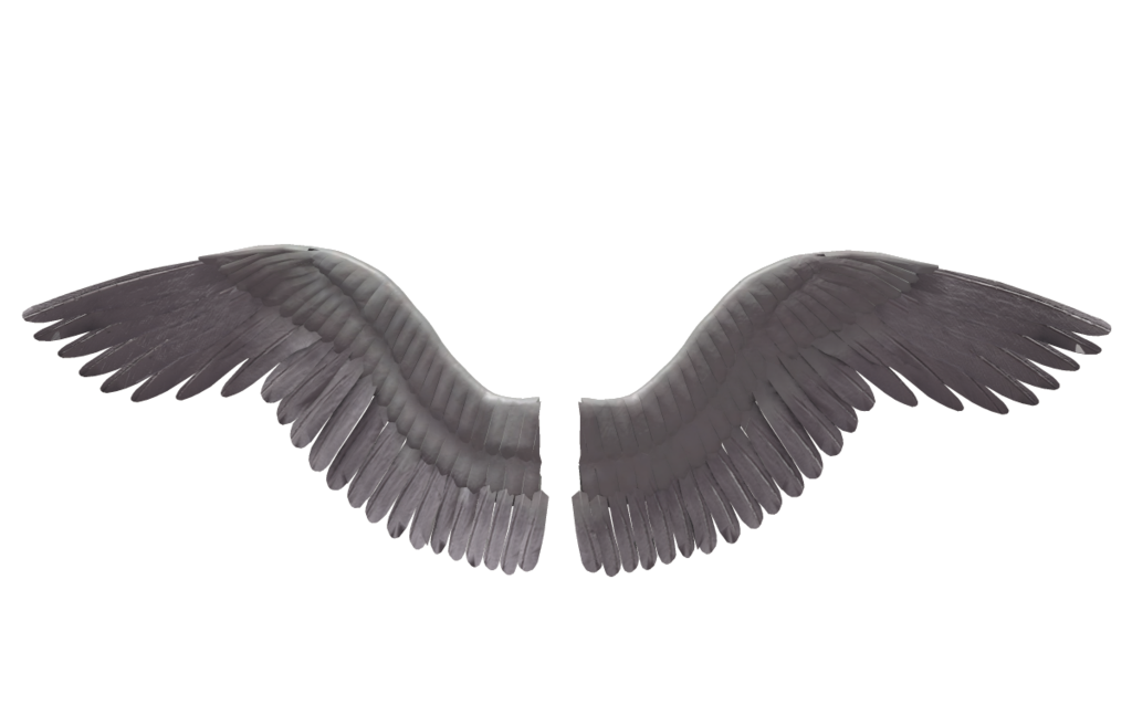 Angel wings stock png. Lucifer rendering photography transprent
