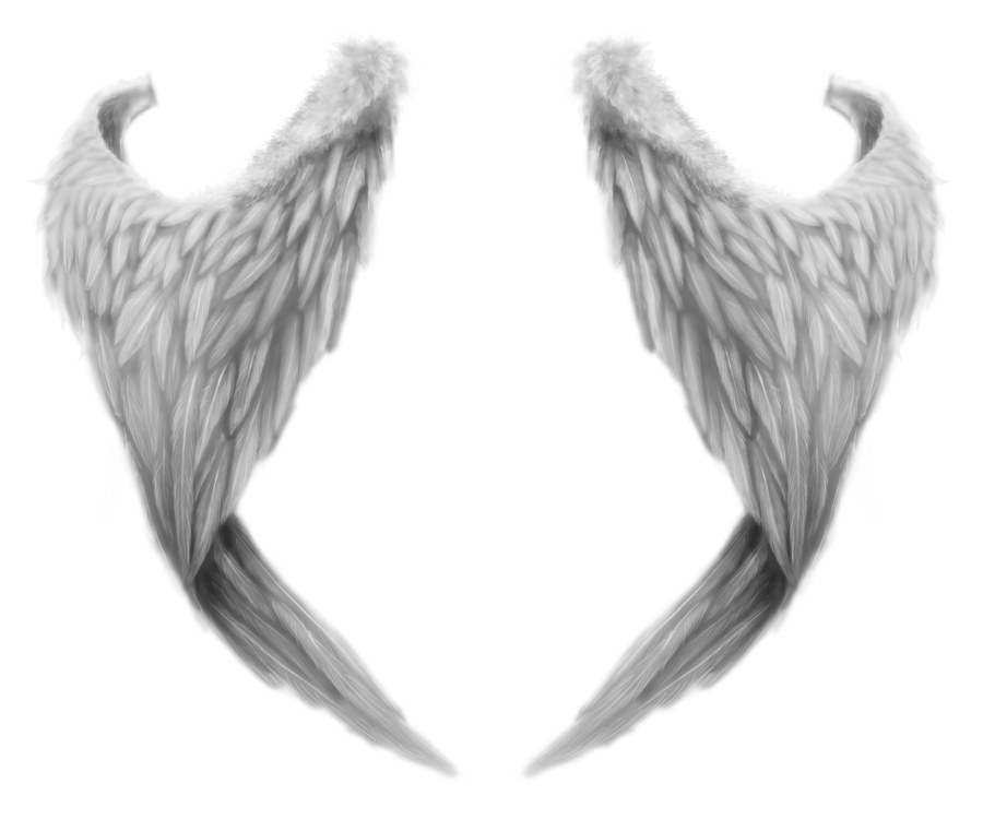Angels png clipart for photoshop. White wings