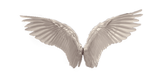 Angel wings transparent png. Shared by and image