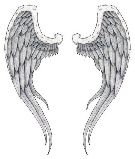 Angel wings transparent png. Tattoos images all image