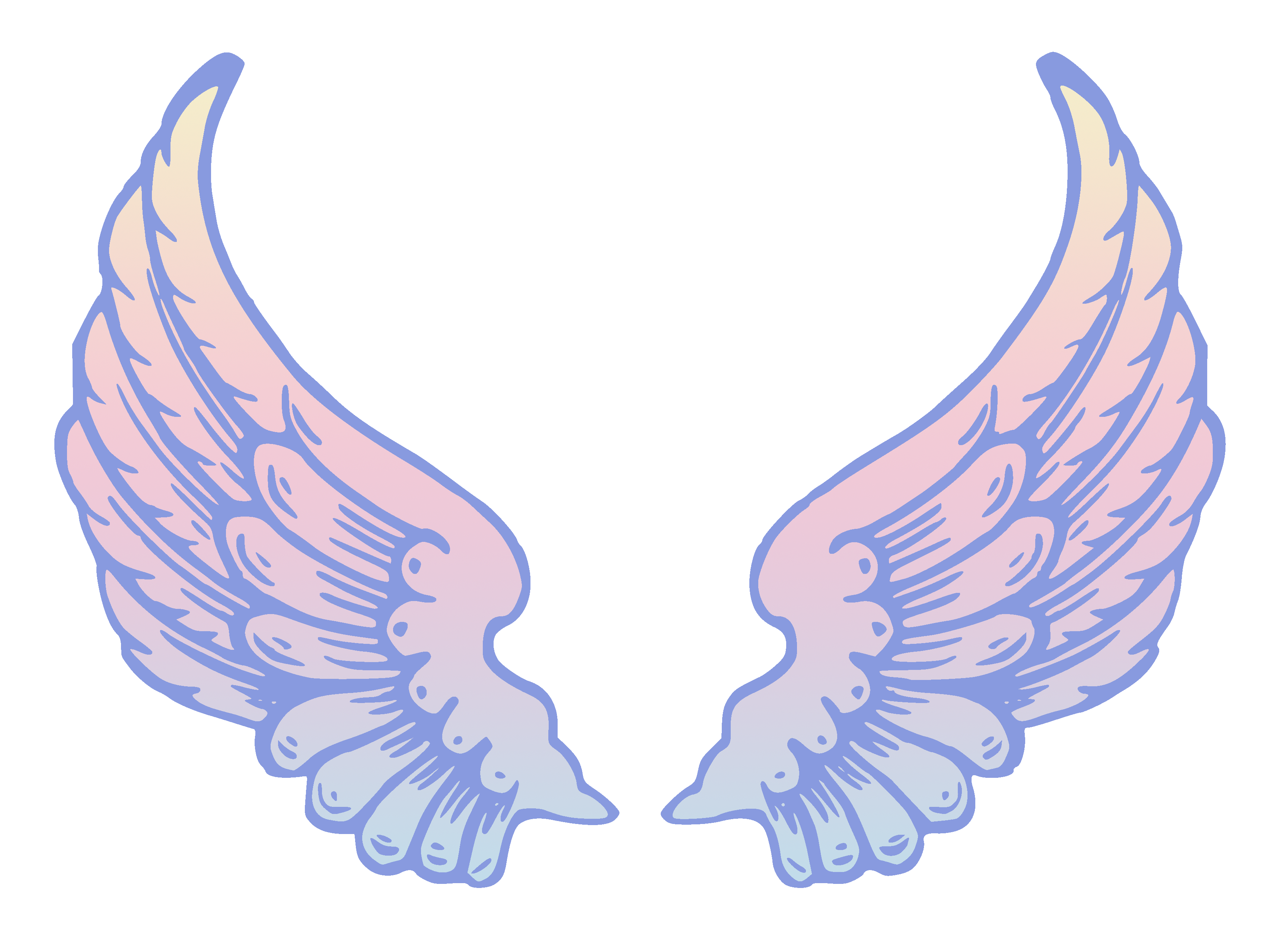 Angel wings vector png. Public domain pastel free