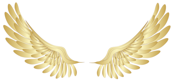 Angels png clipart for photoshop. Golden wings pinterest