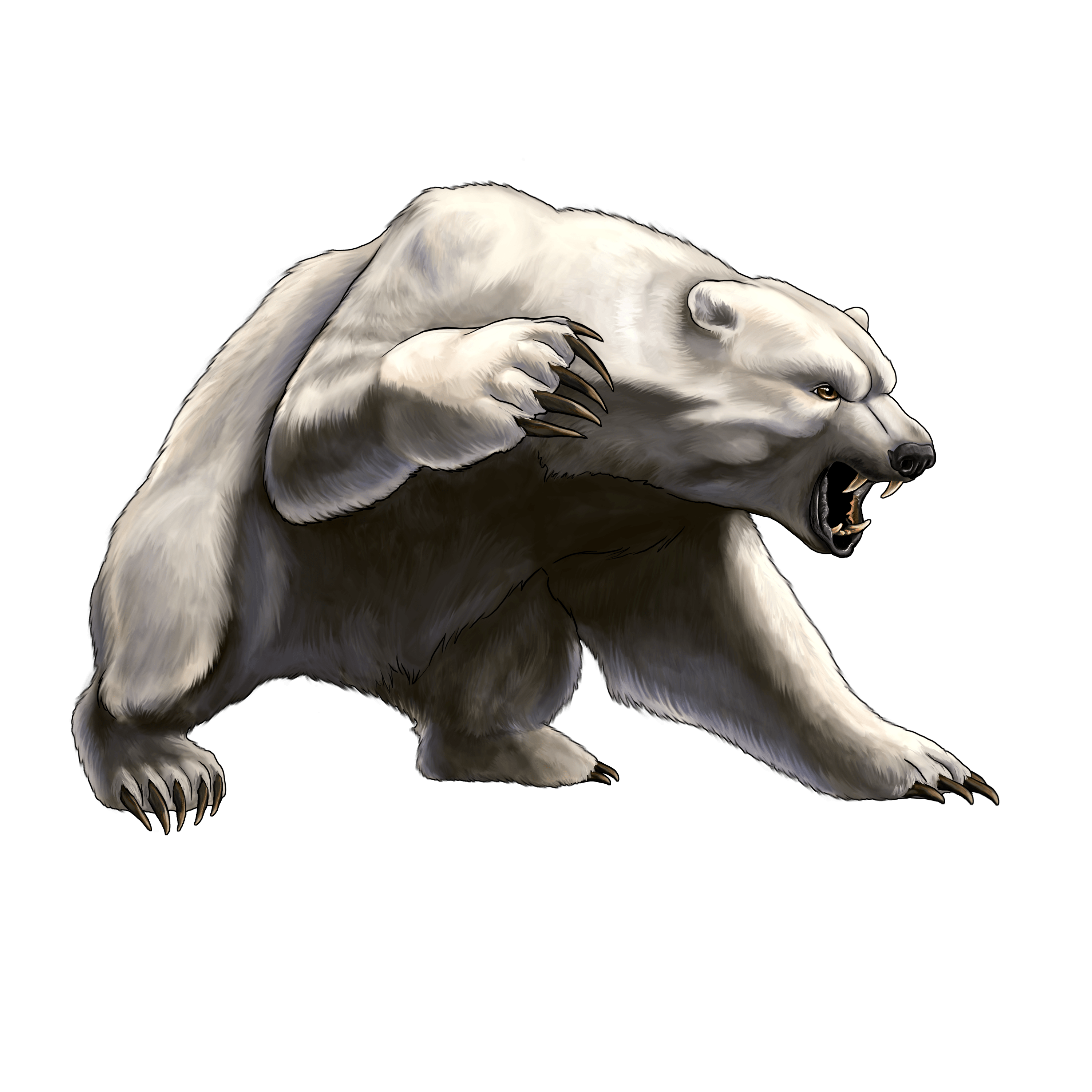 Angry bear png. White image hockey pinterest