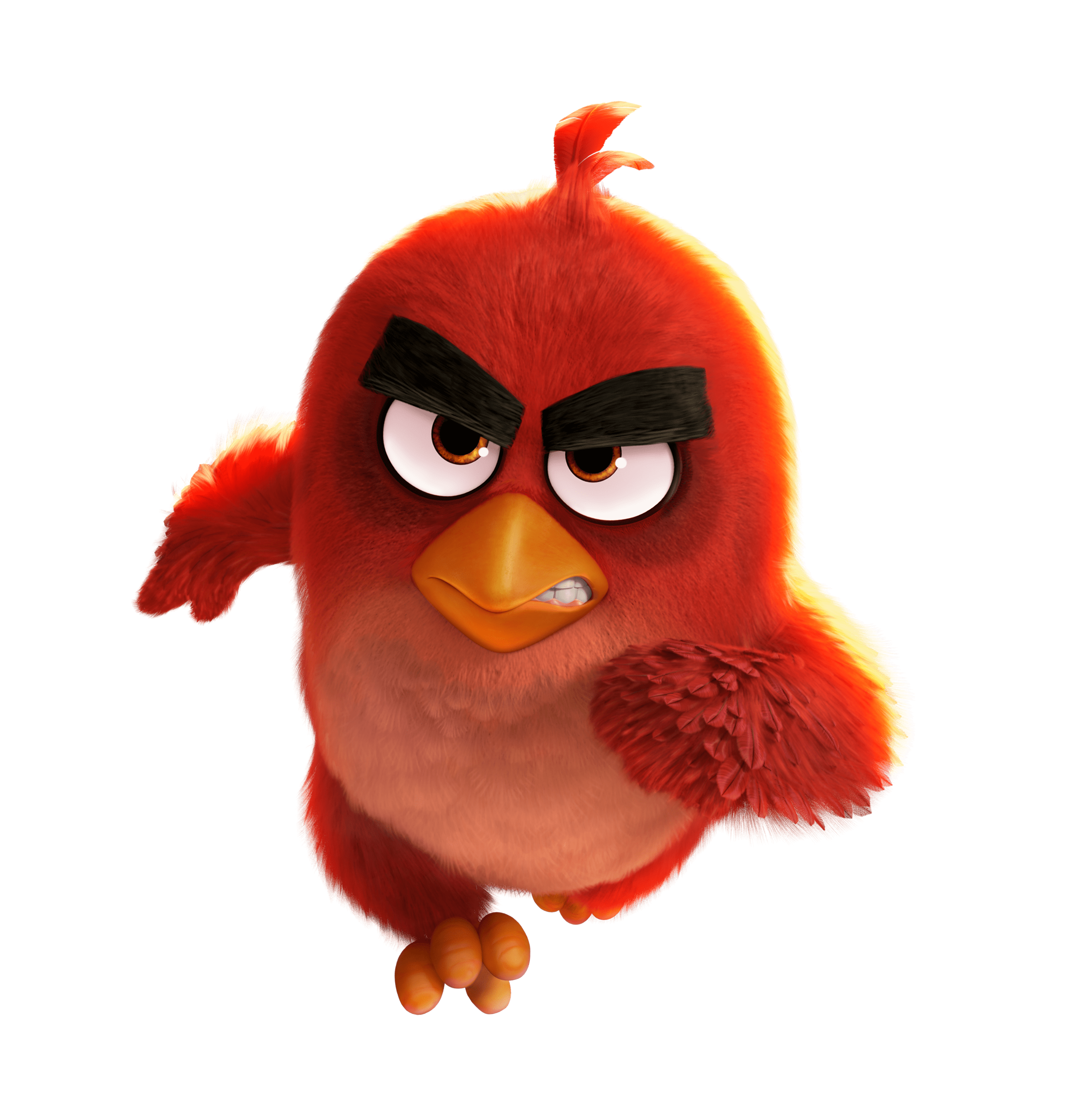 Red bird png. Angry birds movie running